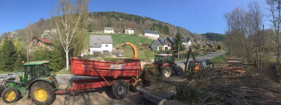 Défrichage en Alsace