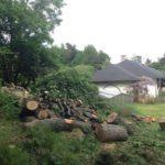 abattage arbre kaysersberg